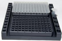 PCR Set Up