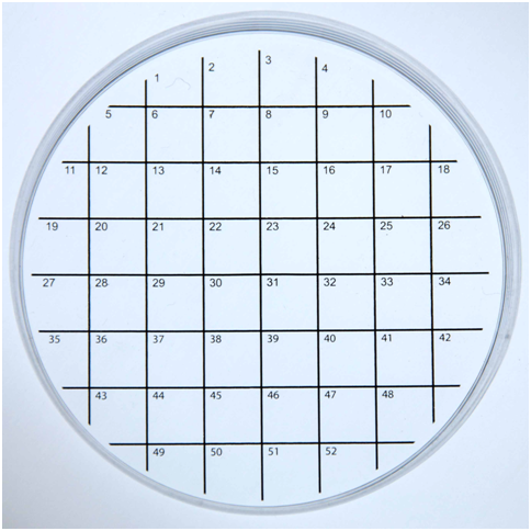 Petridish with numbered Grids for Cell Culture
